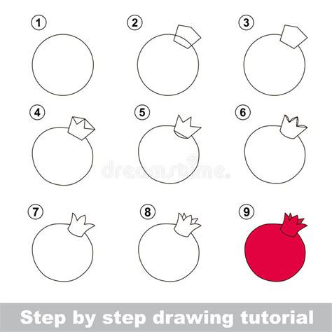 sketch to vector tutorial drawing tutorial how to draw a pomegranate stock vector