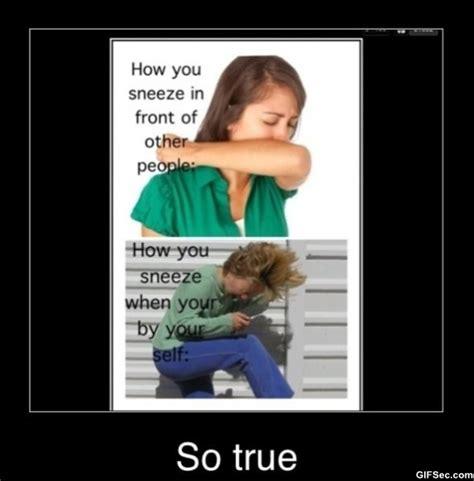 Sneeze Meme - sneeze meme