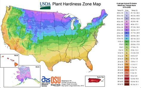 usda garden zones new usda plant hardiness zone map released terrapass