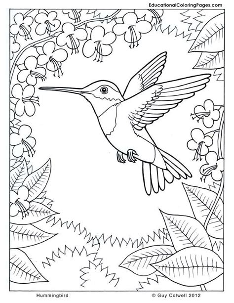 colouring pages nature coloring home