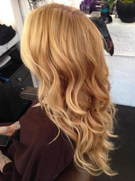 brands of srawberry blonde color shadeshair best 25 hair color charts ideas on pinterest