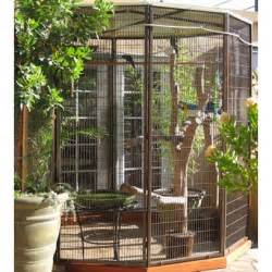 bird cage pictures