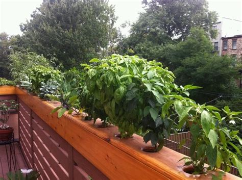Balcony Railing Planter by Deck Railing Planters Deck