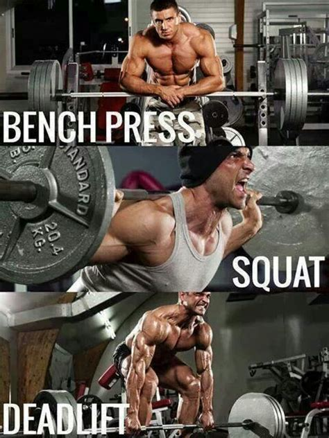 bench press workout for mass 8 best images about compound workouts on pinterest