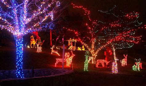 collection shelby farms christmas lights pictures best