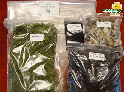 make your own terraium hard goods kit morning dew tropical plants