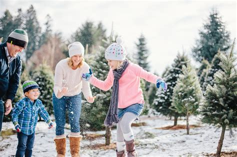 family fun at the christmas tree farm photographers of