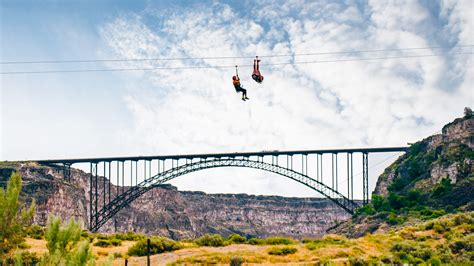 elon musk zipline kids zip line harness kids get free image about wiring