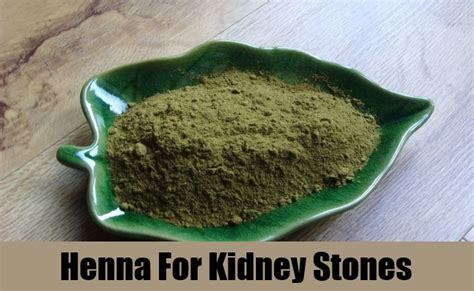 5 herbal remedies for kidney stones best herbs for