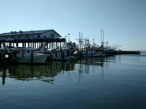 Harbor House Seafood by Photo0 Jpg Fotograf 237 A De Mcelroy S Harbor House Seafood