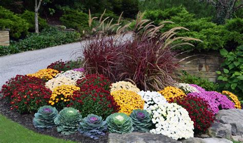 fall landscaping tips uncategorized fall landscaping tips hoalily home design