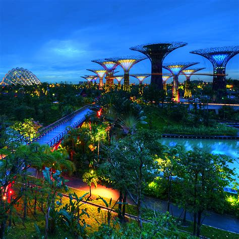 Singapore Gardens By The Bay - gardens by the bay visit singapore official site
