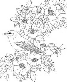 coloring pages printable free free printable coloring york bird