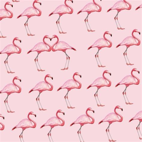 flamingo wallpaper pattern flamingo pattern wallpaper
