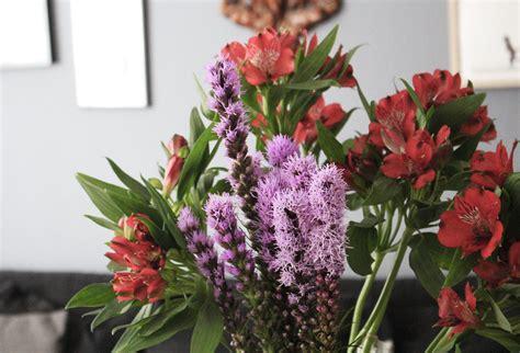 Langstielige Blumen by Blumige Tage Das Bloomy Days Abo Im Test Stryletz