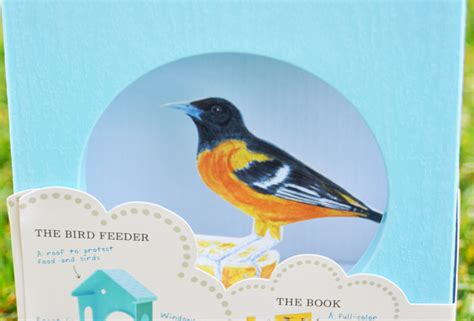 My Bird Book tell me a story my bird book and bird feeder giveaway imagine childhood magic