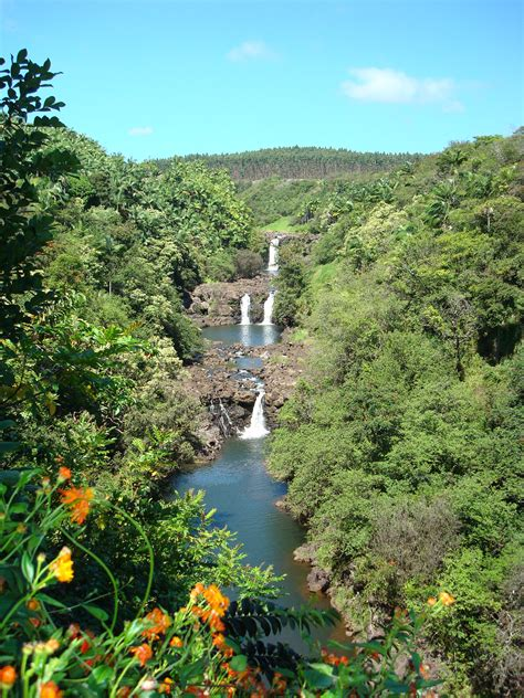 Hawaii Botanical Garden Hawaii Tropical Botanical Garden Mowryjournal