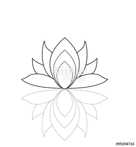 fiore vettoriale quot lotus flower isolated on white vector fiore di loto