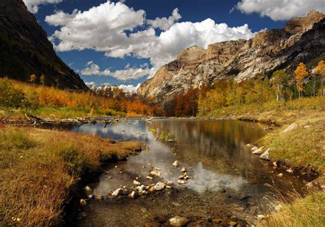 Seven Largest National Forests - National Forest Foundation