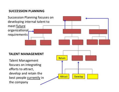bench strength succession planning succession planning developing your bench strength