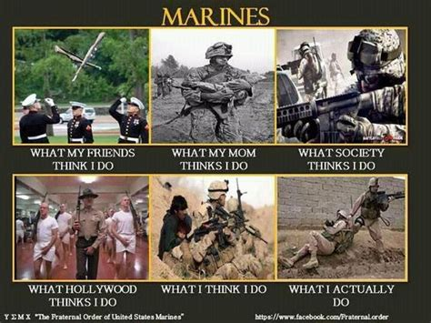 Funny Marine Memes - marine memes my marine and memes on pinterest