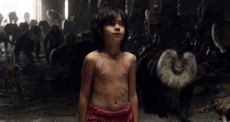 libro la voz de las el libro de la selva sinopsis y tr 225 iler es el cine