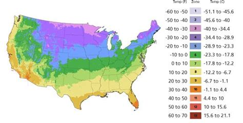 Gardenia Zone 7a 1000 Ideas About Zip Code Map On Zip Code For