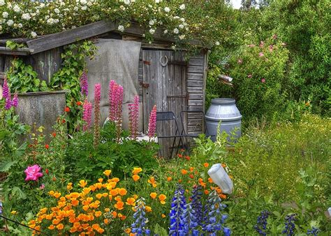 Garden Allotment Ideas Garden Allotment Ideas 12 Terrific Garden Allotment Ideas Photo Inspriational Qatada Garden