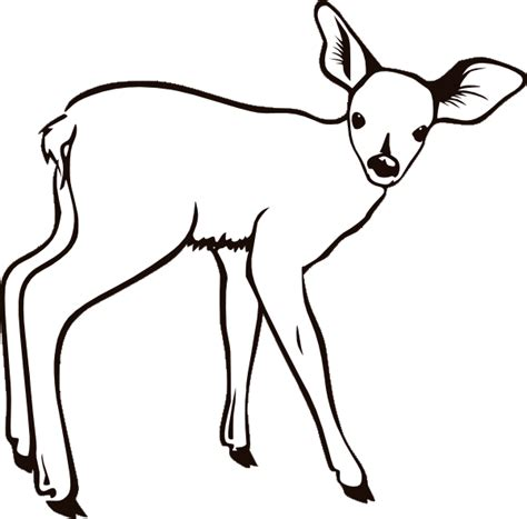Coloring Page Deer by Deer Coloring Pages 3 Coloring Pages To Print