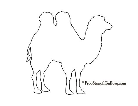 camel template pics for gt sitting camel drawing