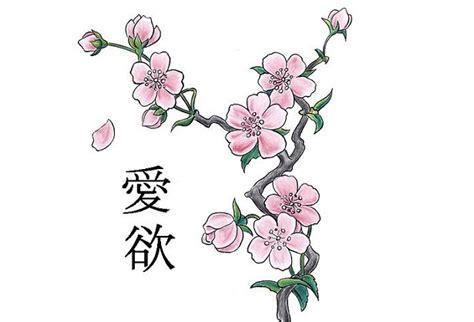 disegni di fiori giapponesi fiori di ciliegio significato e immagini idee green