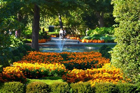 Botanical Gardens Usa Admire The Most Beautiful Autumn Gardens In America