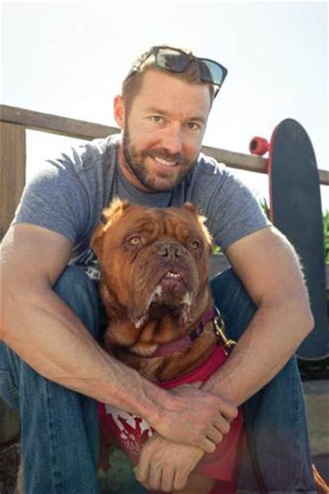 zach skow dogs hooch rescued from abuse is 2016 american humane hero