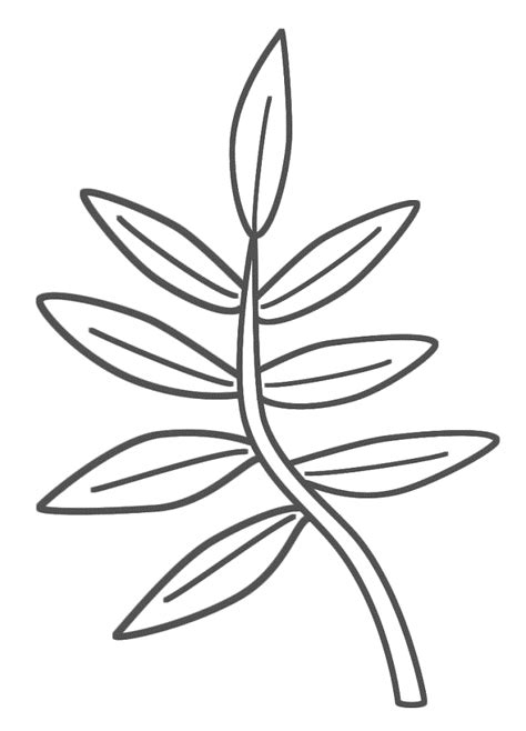 palm branch template coloring pages leaves coloring home