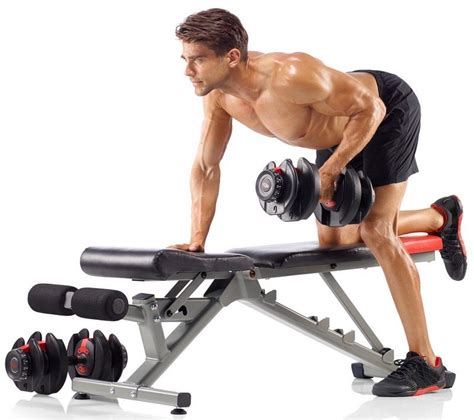 dumbbells and bench workout bowflex selecttech 552 adjustable dumbbells workout