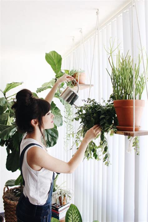 best small hanging plants 1000 ideas about hanging plants on pinterest window