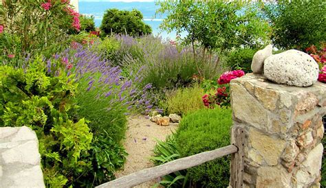 Grass Alternatives For Backyards by Grass Lawn Alternatives For An Eco Friendly Backyard Gilmour