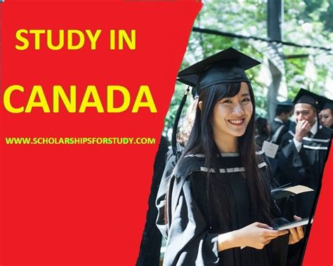 Study Mba In Canada With Scholarship by Top Study Abroad Scholarships Scholarships Abroad