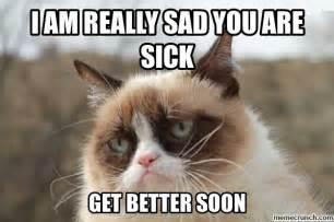 Sick Cat Meme - sick cats quotes quotesgram
