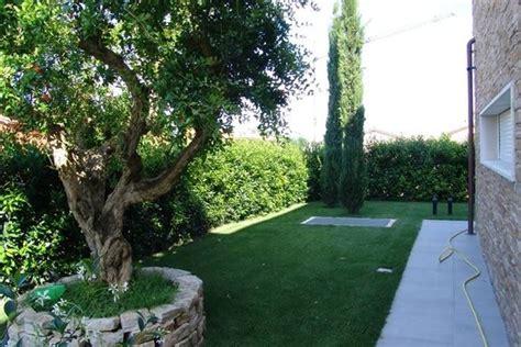 progettare un piccolo giardino progettare il giardino come progettare il giardino