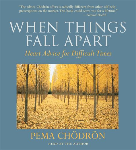 libro things fall apart penguin when things fall apart by pema chodron penguin books australia