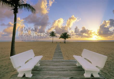 Summer House Detox Ft Lauderdale by Florida Treatment Programs Archives Palm Partners
