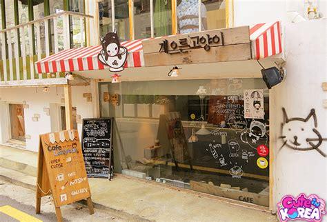 Coffee Di Korea cafes in korea bonni