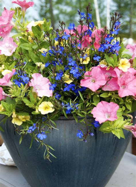 planters amazing container flower gardening container