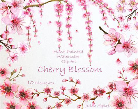 cherry blossom clip cherry blossom watercolor clip illustrations