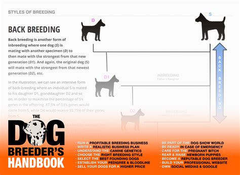 buy the dog breeder s handbook breed dogs make money gt gt 18