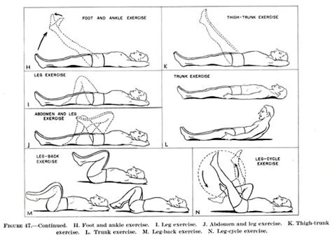 exercises to do in bed bed exercises physiotherapy physiotherapy reflexology