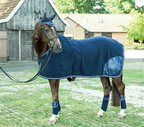 sweat rugs for horses for sale affordable fleece rugs and coolers fast tack direct