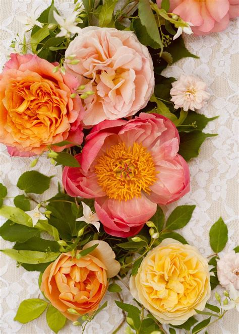 peonies and orange blossoms designing 144 best i wallpapers images on backgrounds decor and time