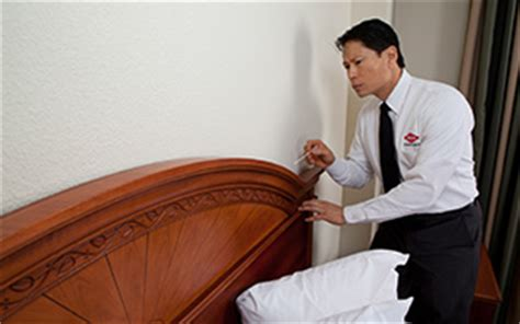 orkin bed bug treatment commercial bed bug services for businesses hotels
